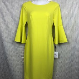 Calvin Klein Bell Sleeve Dress